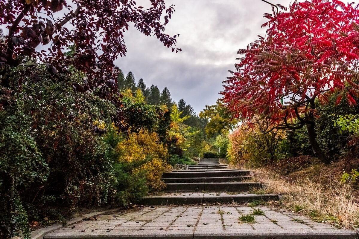 stairs-983932_1280
